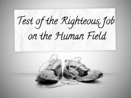 Test of the Righteous Job on the Human Field